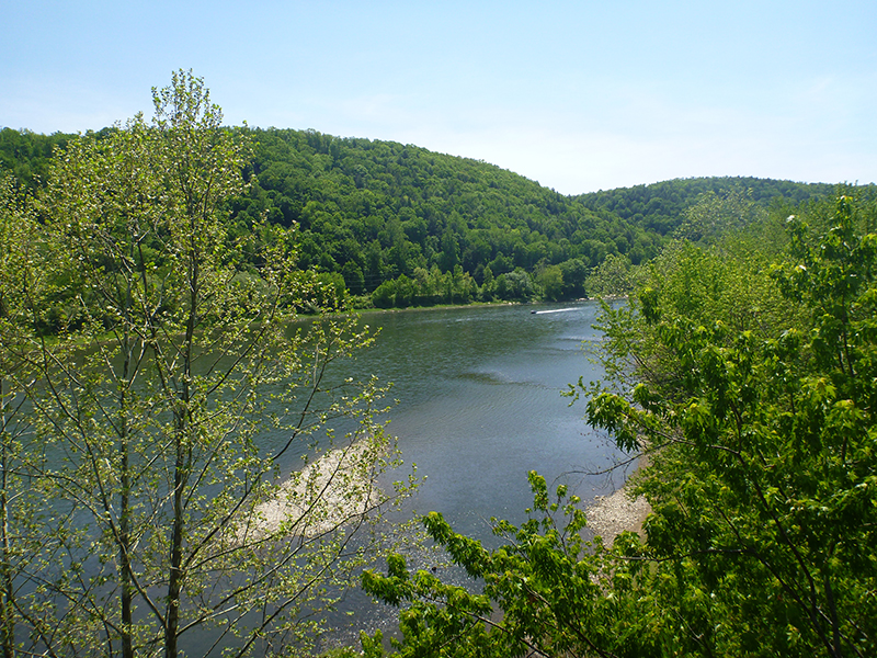 Sandy-Creek-Trail-05-19-2012-vincent-troia-3.jpg