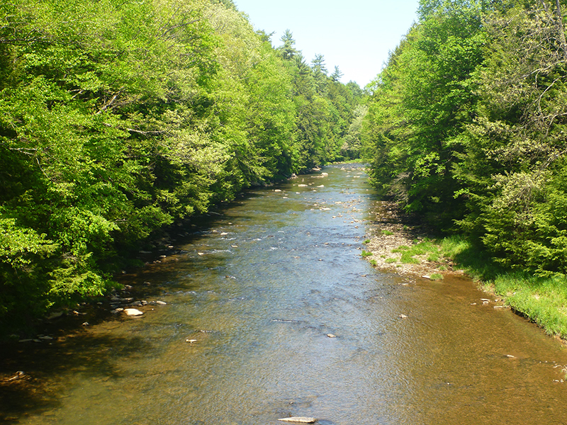 Sandy-Creek-Trail-05-19-2012Copyright-Vincent-Troia-48.jpg